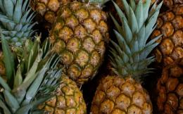 FoodPineapple Wallpaper 1490