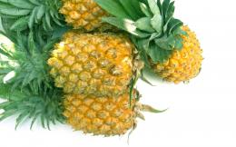 Pineapple Wallpapers 392
