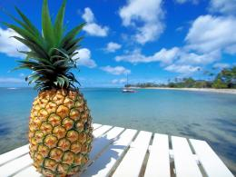 Pineapple Beach HD wallpapersPineapple Beach 1346