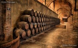 Download wallpaper wine cellar, old man free desktop wallpaper in the 1067