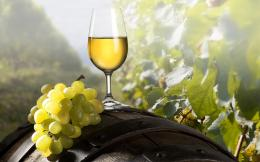 Wine Desktop Wallpapers 853