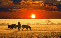 set as desktop wallpaper africa sunset wallpaper 1900x1200 278 kb 1147