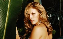 Amanda Righetti Wallpapers 281