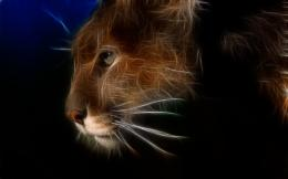 Cougar puma cat fractal animals HD Wallpaper 156