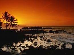 Shore Oahu HawaiiHawaii Wallpapers 1497