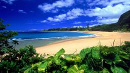 for hawaii wallpaper hawaii download this wallpaper desktop background 1262