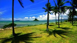 backgrounds, wallpaper, backrounds, chinaman, desktop, beach, hawaii 107