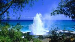 backgrounds, desktop, wallpaper, hawaii, spouting, beach, kauai 248