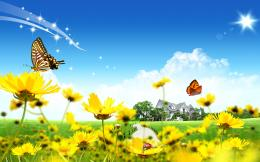 Beautiful Flowers Home Wallpapers   HD Wallpapers 360