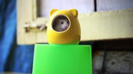 Rat in Toy | HD Wallpapers 196