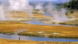 Yellowstone National Park wallpaper background 542