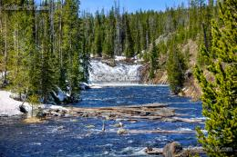 Download wallpaper Yellowstone National Park, waterfall, river, trees 480