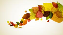 autumn leaves desktop wallpaper jpg 718