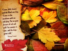 to a beautiful Saturday, and your First Day of Autumn 2012Enjoy 508