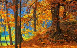 high definition wallpaper awesome autumn wallpaper awesome park autumn 1797