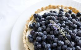 high definition wallpaper blueberries fruits pictures blueberries hd 1442