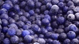 Blueberries hd wallpaper 1129
