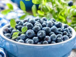 blueberries with leaves widescreen high definition wallpaper for 1649