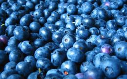 Wallpapers,Queen of fruitblueberries HD photography wallpaper 5 914