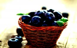 Blueberries blueberry food sweet dessert 1354