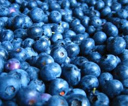 Blueberry Hd Image Puzzle 1418