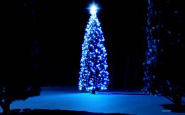 Christmas Tree HD Wallpapers 1245
