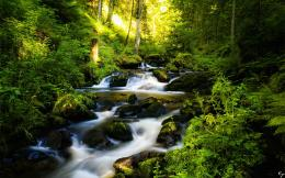 Black Forest Germany Landscape Wallpaper 1382