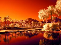 infrared landscape Wallpapers 1670