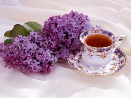 1600x1200 Lilac and Tea desktop PC and Mac wallpaper 1735