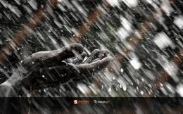 Image: Summer Rain wallpapers and stock photos 662