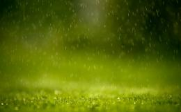 Raining wallpaper 454