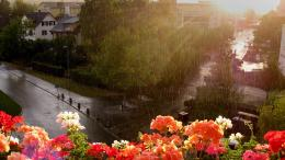 summer rain wide high definition wallpaper for desktop background 890