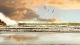 Beach wallpapers Crashing Waves Wallpaper 1190
