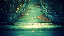 »The old wooden bridge with yellow foliage HD Desktop Wallpaper 1342