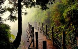 wooden bridge Wallpaper with resolution of 1920x1200 for your desktop 1624