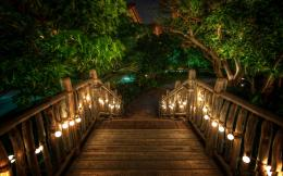 Wooden Bridge Desktop Wallpaper 279