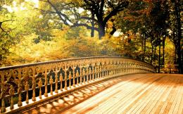 Wooden Bridge Desktop Wallpaper 1342