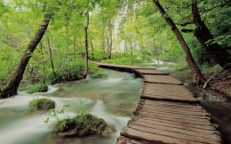 1280x800 Wooden Bridge Seventeen desktop PC and Mac wallpaper 1843