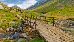 Wooden Bridge Desktop Wallpaper 566