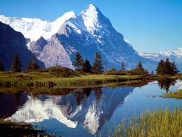 in Switzerland high mountains and river view in forest safari, Amazing 540