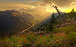 Free Amazing Mountain Scenery, computer desktop wallpapers, pictures 669
