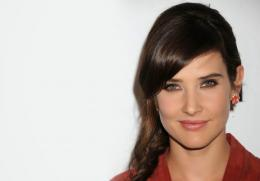 Cobie Smulders HD Wallpaper 928