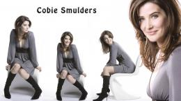 Cobie Smulders hd New Nice Wallpapers 2013 1458