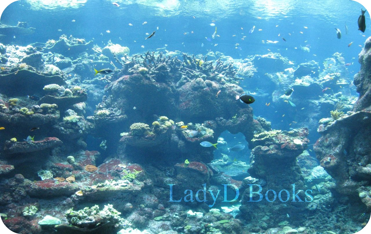 LadyD Books: Wordless Wednesday: Under The Sea, Coral Reef Adventure 1893