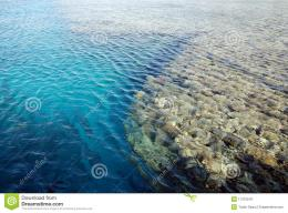 Beautiful crystal clear red sea with amazing corals underwater 637
