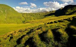 Green Mountains Wallpapers 1479