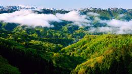 Green Mountains Wallpapers 1379