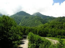 View and download our collection of Green Mountain wallpapers 900