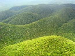View and download our collection of Green Mountain wallpapers 1211