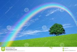 Green Fields And Lone Tree Royalty Free Stock PhotoImage: 25971915 401